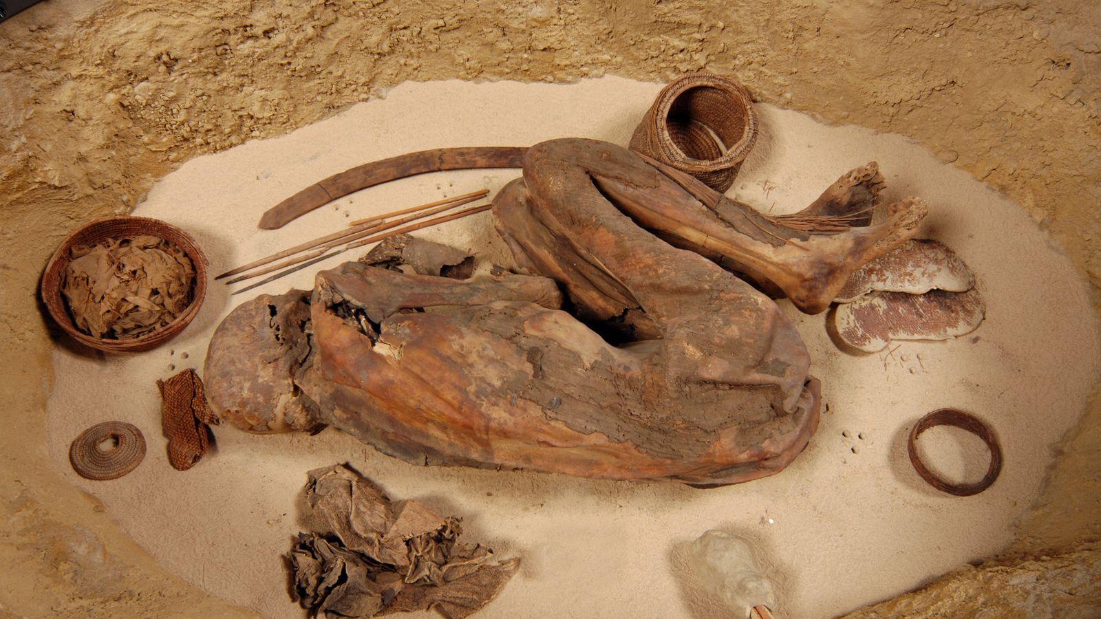 Lange Zeit dachten Forscher, dass die ältesten ägyptischen Mumien auf natürliche Weise entstanden waren. Immer mehr ...