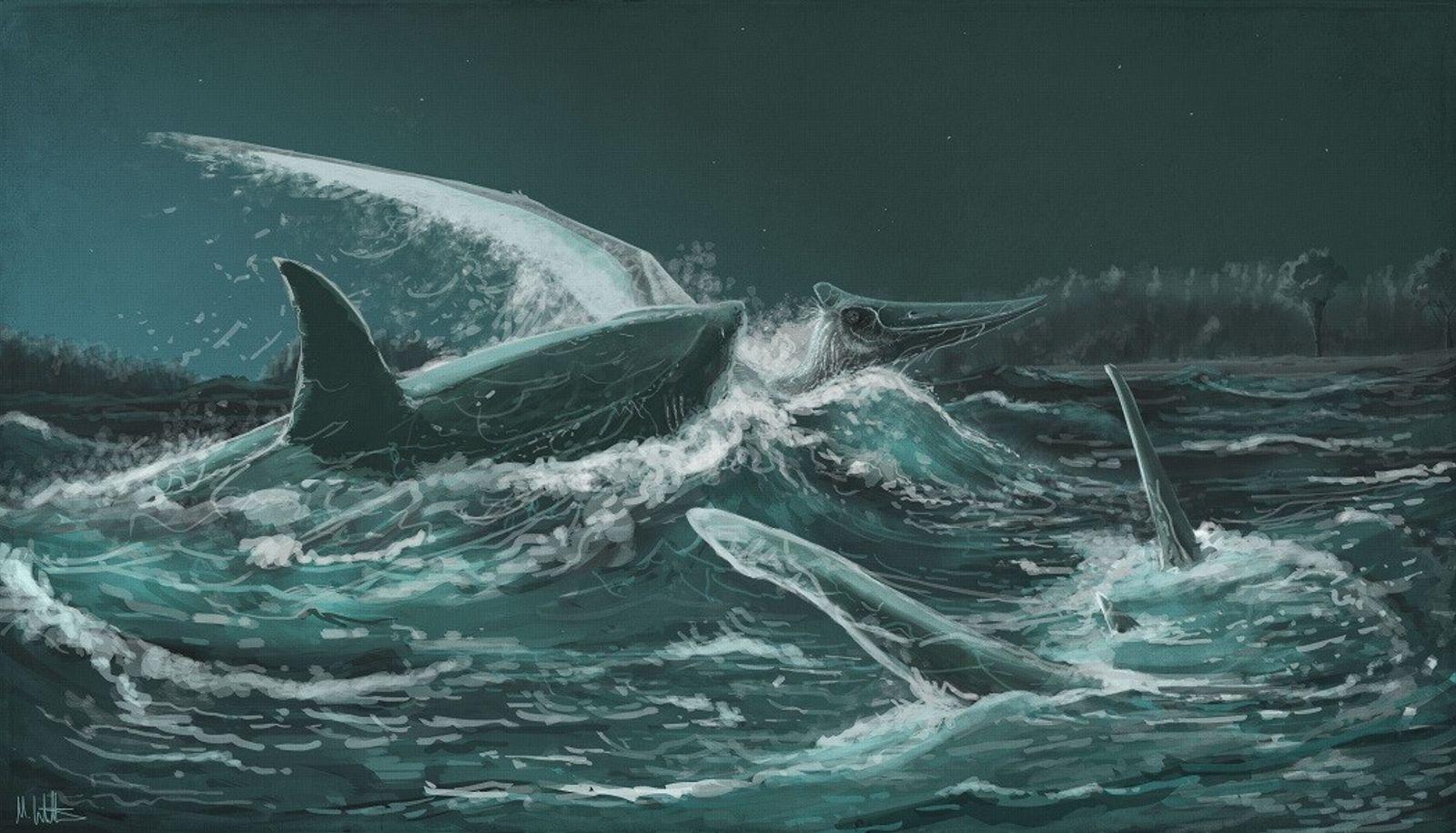 Fossilfund: Prähistorische Haie fraßen fliegende Reptilien