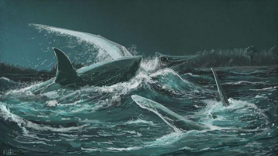 Ein Pteranodon fällt in dieser Illustration dem Hai Squalicorax kaupizum Opfer.