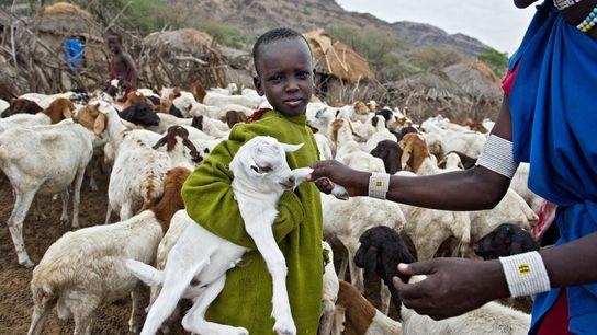Eine junge Massai hält eine kleine Ziege im Arm. Die Aufnahme entstand neben einer Straße nahe ...
