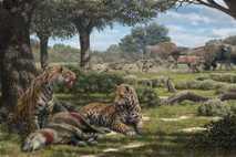 Im Schatten einiger Bäume lassen sich Säbelzahnkatzen ihre Beute, einen waldbewohnenden Pflanzenfresser, schmecken. Im Hintergrund jagen ...