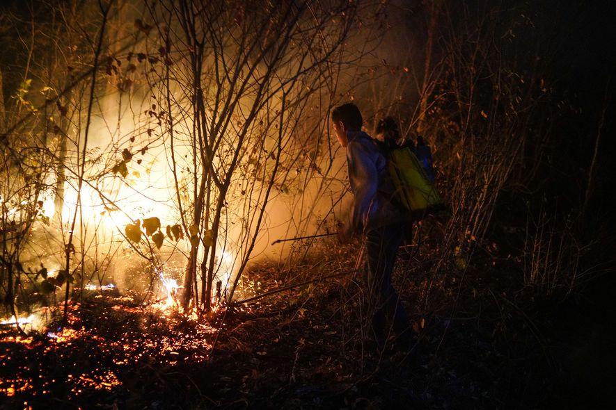 Junge freiwillige Helfer aus Roboré, einer kleinen Stadt etwa 30 Kilometer entfernt von Aguas Calientes, bekämpfen ...