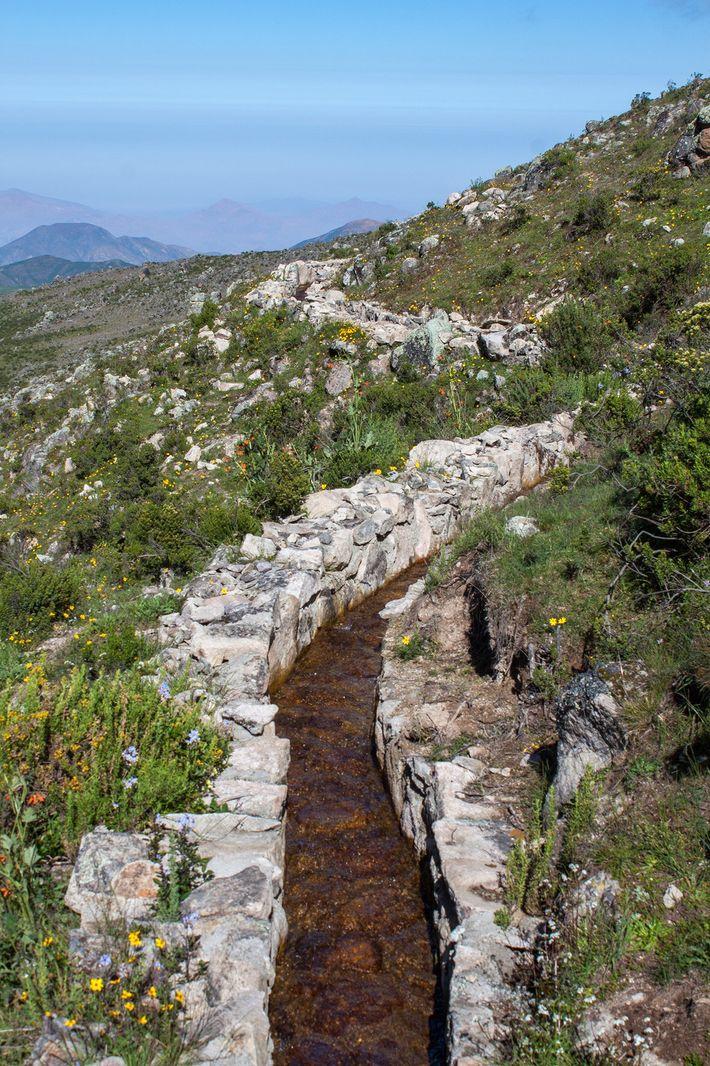 Die Kanäle oder amunas leiten das Wasser während der Regenzeit in sandige und felsige Bereiche. Dort ...