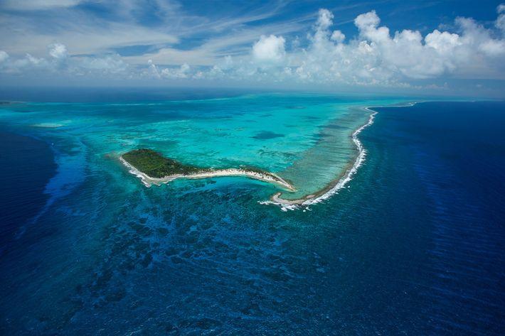 Das Half Moon Caye Natural Monument in Belize befindet sich inmitten des über 250 Kilometer langen ...