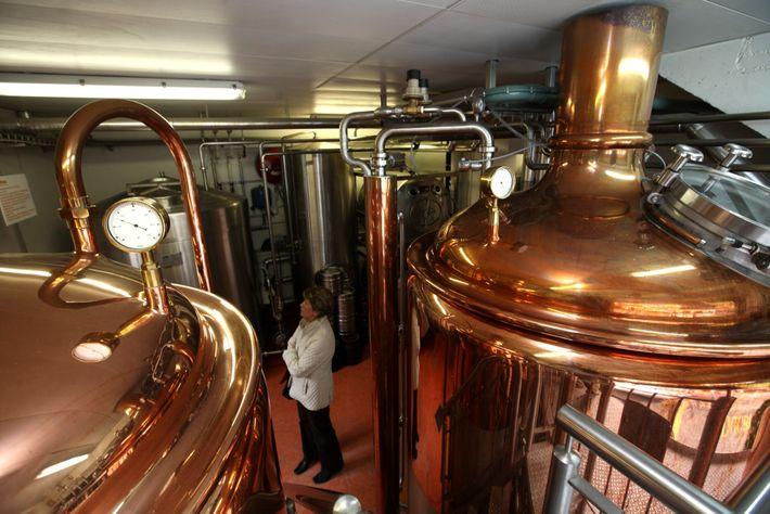Die Biere von BierVision werden mit Alpenquellwasser, Schweizer Hopfen und Bio-Gerstenmalz hergestellt.