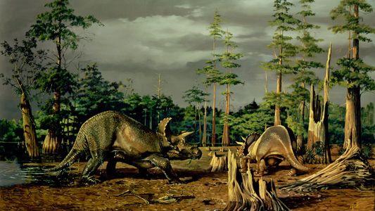 Die Kunst, Dinosaurier zum Leben zu erwecken