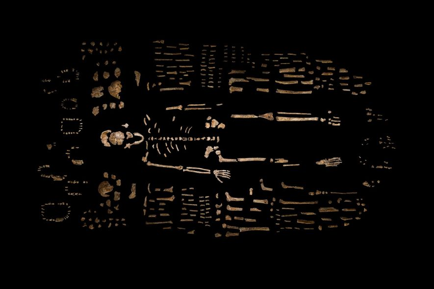 Höhlenforscher finden neue Fossilien eines geheimnisvollen menschlichen Verwandten