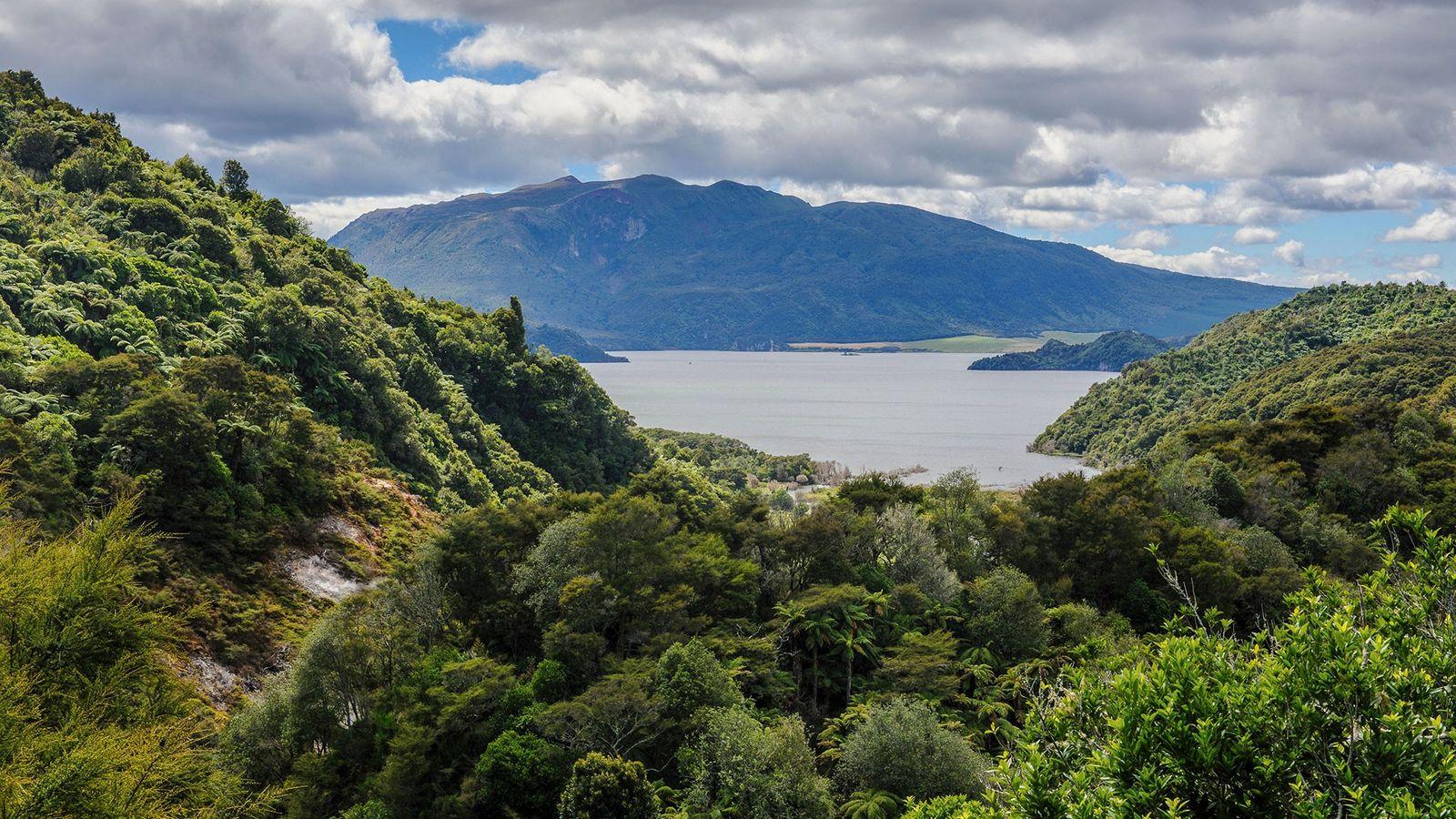 Blick auf den Lake Rotomahana, Waimangu Volcanic Valley, Nordinsel, Neuseeland