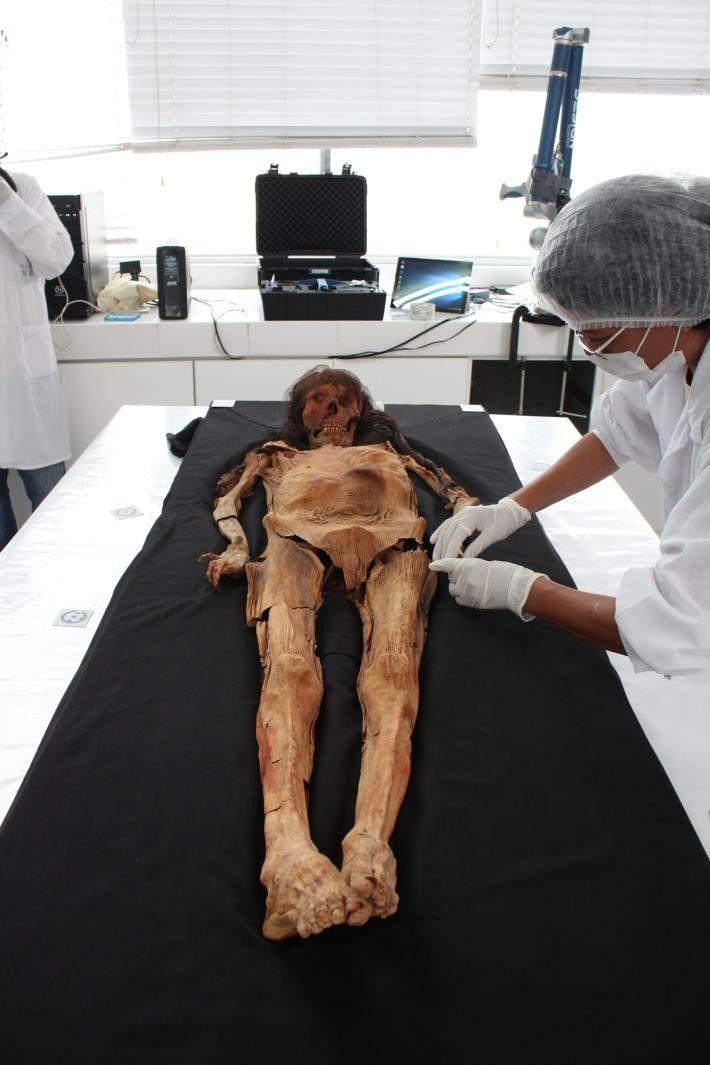Spezialisten untersuchen die Mumie