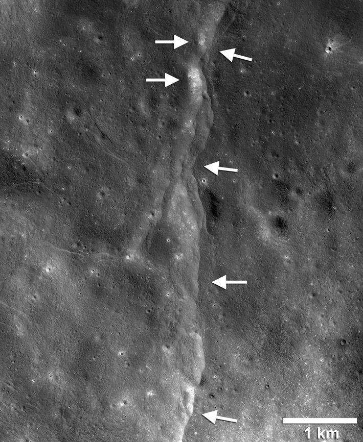 Diese seismische ShakeMap, die aus Aufnahmen der NASA erstellt wurde, zeigt die erwarteten Bewegungen für ein ...