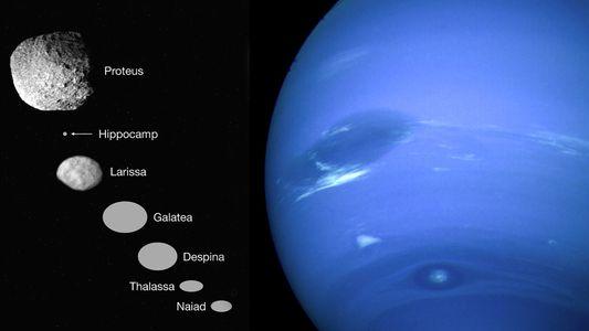 Happy Birthday, Hippocamp! Neptuns neuster Mond