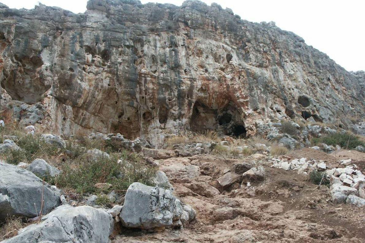 Das Fossil wurde in der Misliya-Höhle entdeckt, die zu einer Reihe berühmter prähistorischer Höhlenfundstätten an den ...