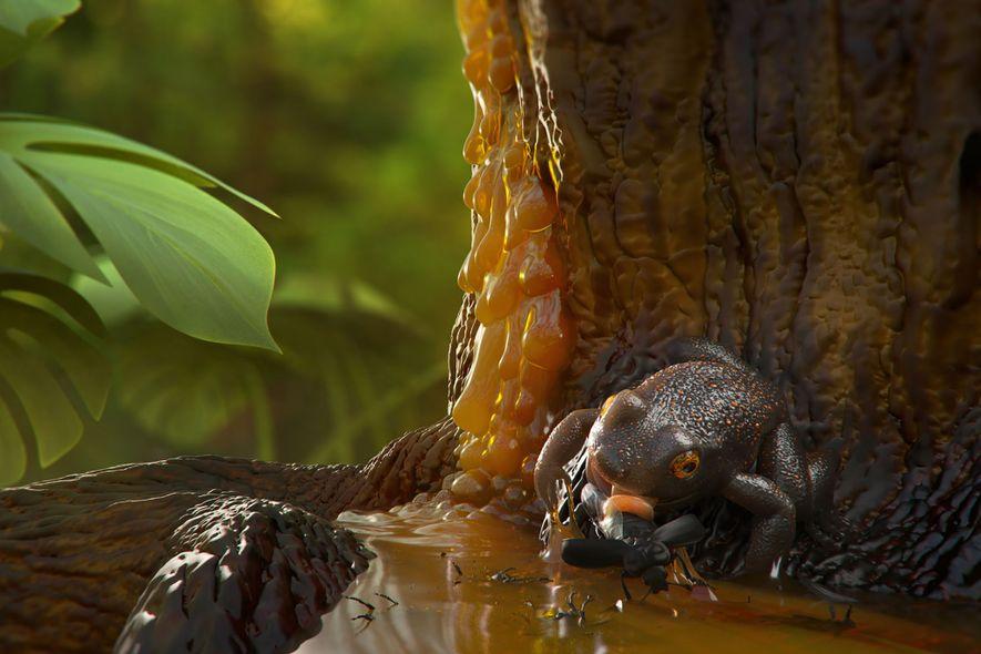 Eine Illustration zeigt, wie der Frosch womöglich in dem Baumharz stecken blieb und schlussendlich zu dem ...