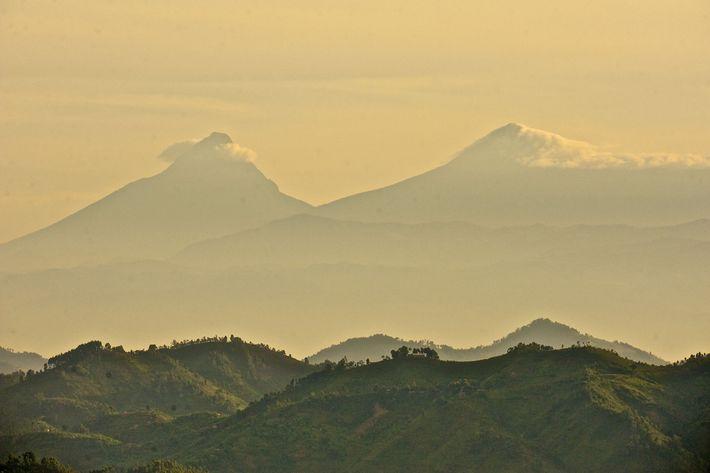 Der Mikeno (links) und der Karisimbi (rechts) im Nationalpark Virunga. Eine Studie identifizierte die Region als ...