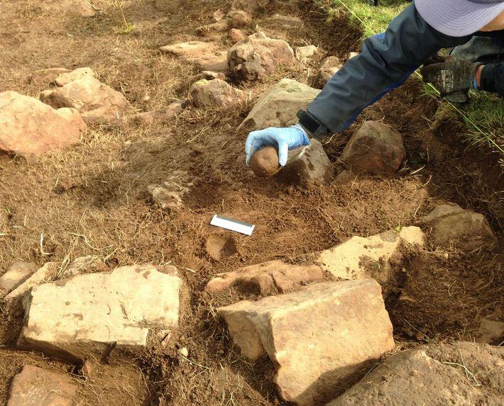 Archäologen bei den Ausgrabungen