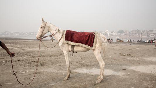 Galerie: Bilder vom dreckigsten Fluss der Welt