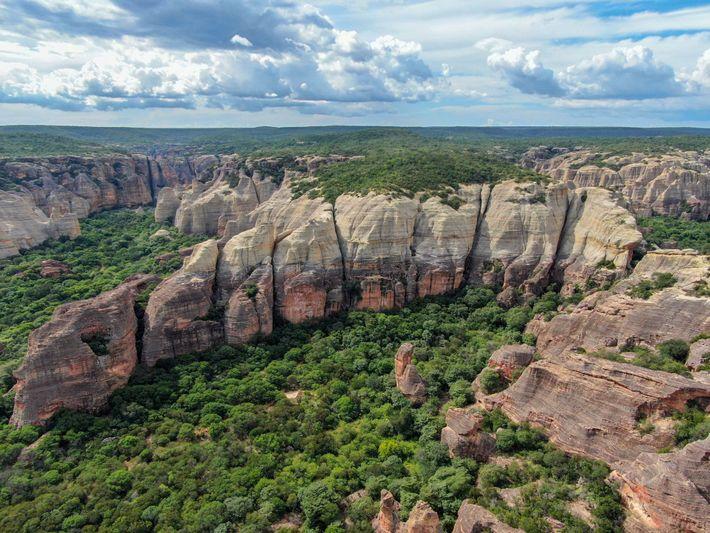 Die untersuchte archäologische Stätte der Kapuzineraffen befindet sich im brasilianischen Nationalpark Serra da Capivara. Die Affen ...