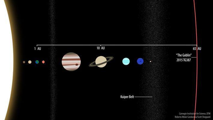 Diese Illustration zeigt die Umlaufbahn des neuen Objekts 2015 TG387 im Vergleich zum Rest des Sonnensystems.