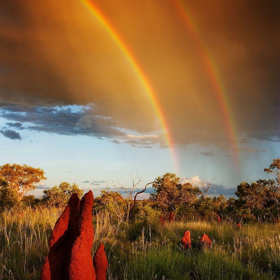 Die Vielfalt der Regenbögen