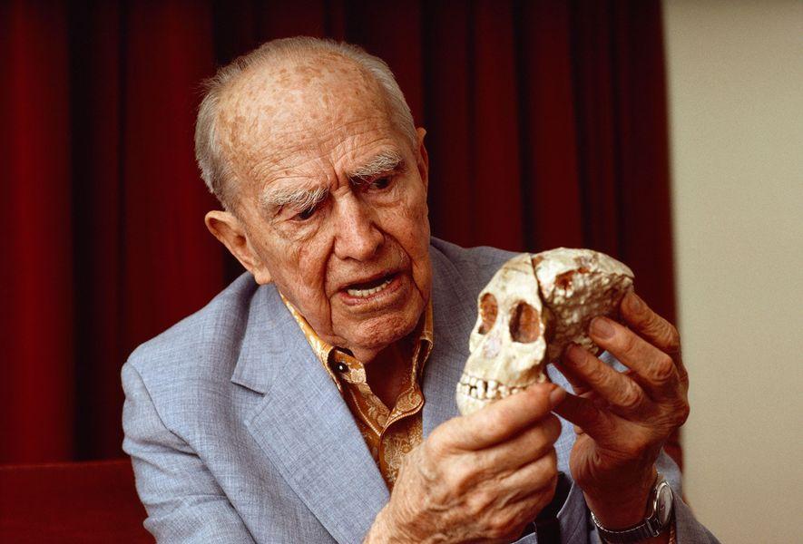 Raymond Dart, Begründer der Killeraffen-Theorie der menschlichen Evolution, hält den Schädel des Taung-Kindes, dem ersten gefundenen ...