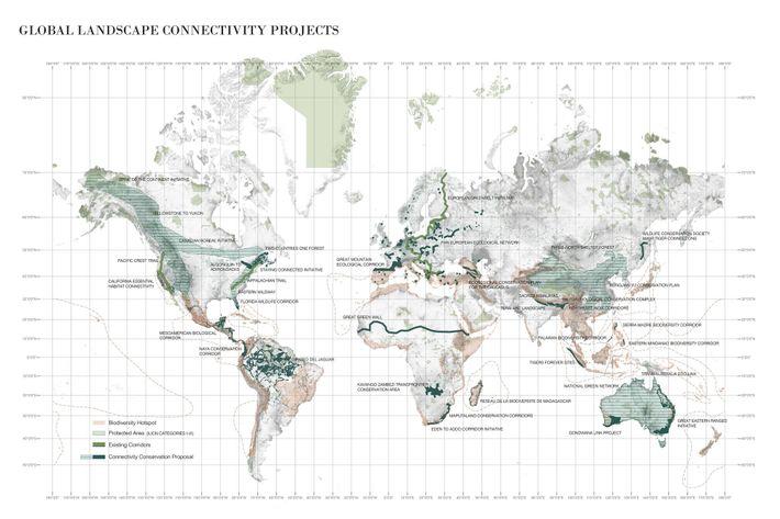 Projekte, die Biodiversitäts-Hotspots verbinden sollen