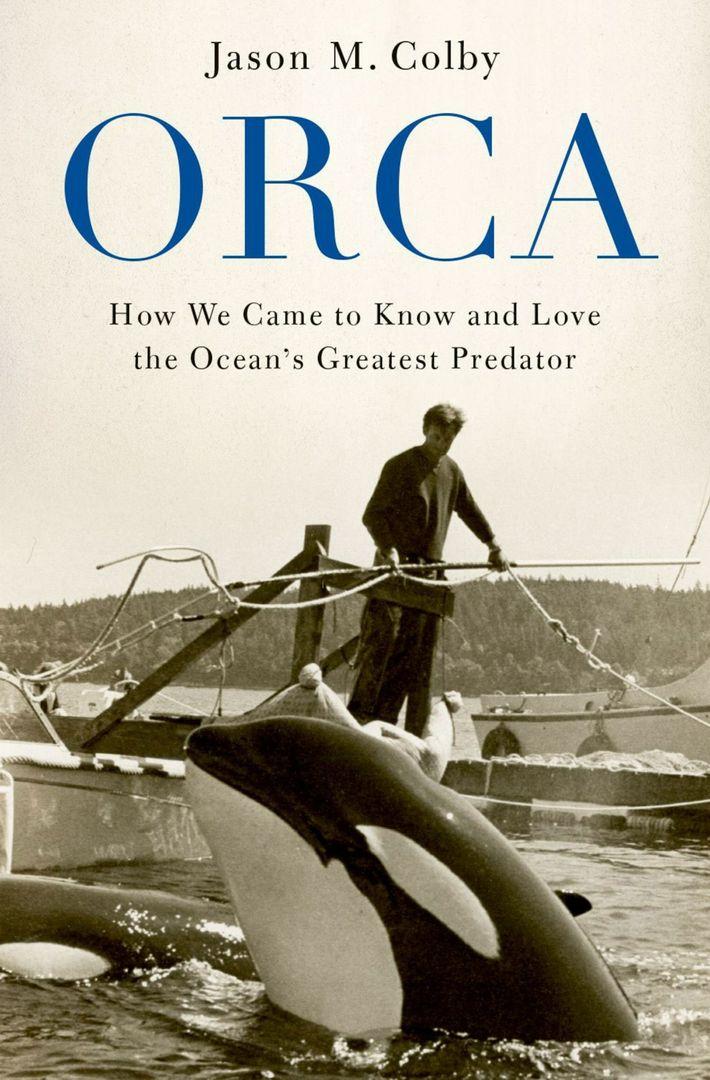 Orca Buchcover