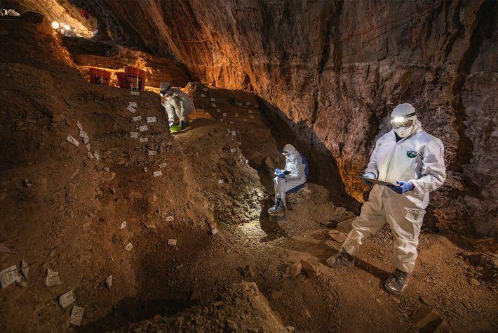 Wissenschaftler vergleichen Notizen über die Stratigraphie der Chiquihuite-Höhle, ehe sie Proben pflanzlicher und tierischer DNA aus ...