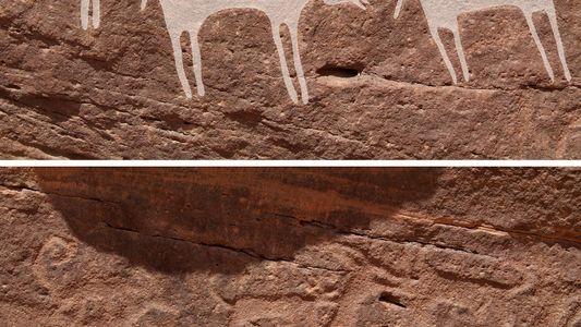 Galerie: Sind dies die ältesten Darstellungen von Hunden?
