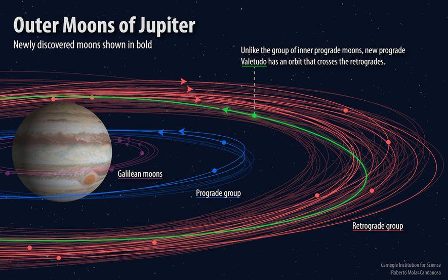 Eine Illustration zeigt die Umlaufbahnen der äußeren Jupitermonde.