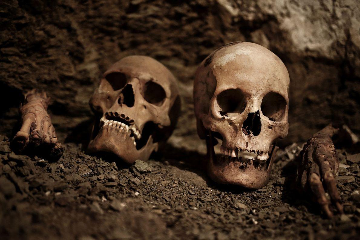 In dem 3.500 Jahre alten Grab fanden sich Schädel, Mumien, Töpferware und andere Artefakte.