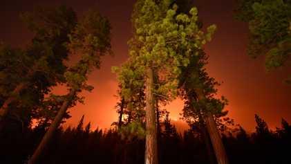 Galerie: Atemberaubende Aufnahmen der gewaltigen Waldbrände Kaliforniens