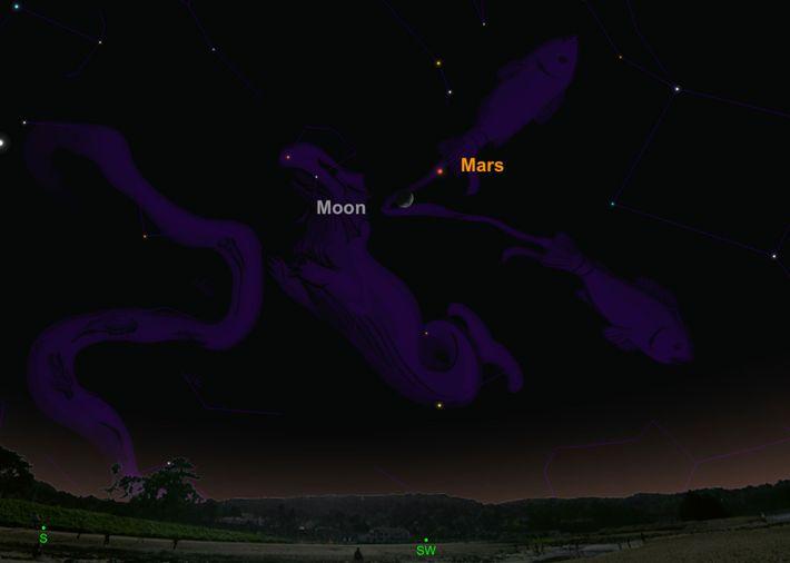 Der Rote Planet und die helle Mondsichel statten einander in dieser Nacht einen kleinen Besuch ab.