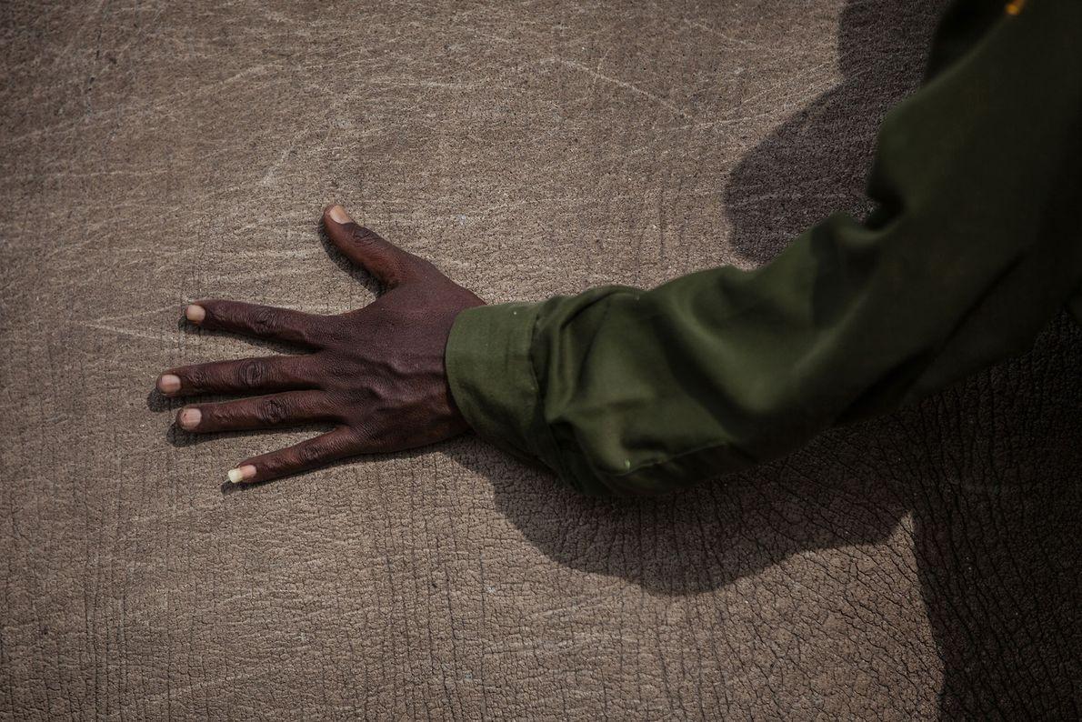 Pfleger beruhigt Sudan.