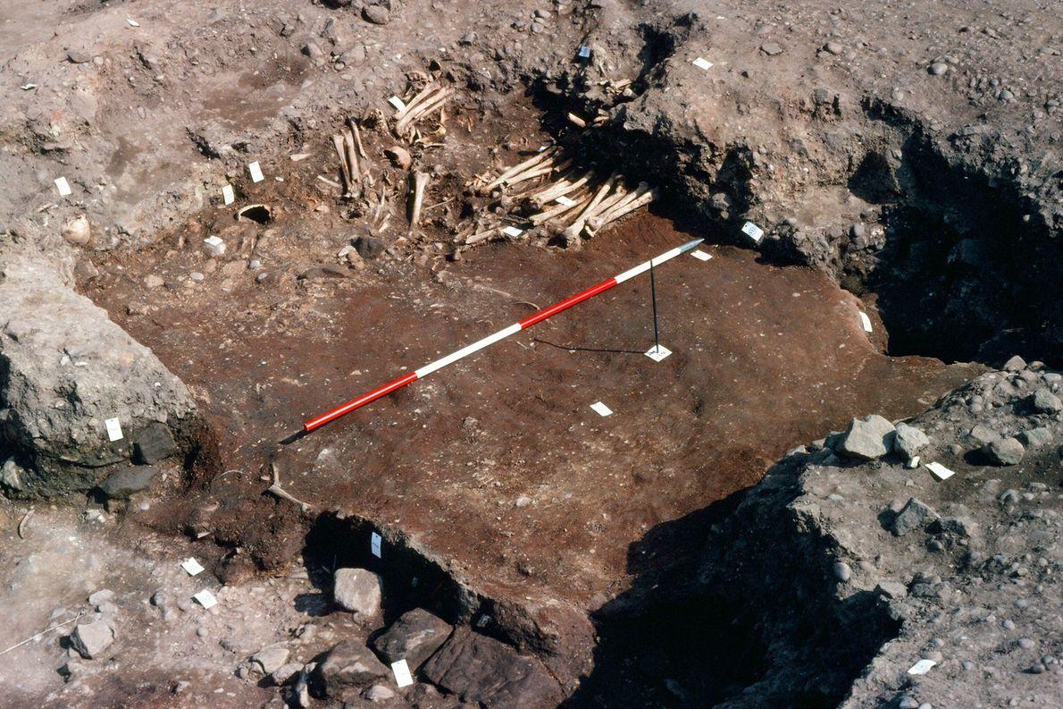 Die Überreste stammen aus einem Grabhügel im englischen Derbyshire. In der Nähe fanden Archäologen Spuren einer ...