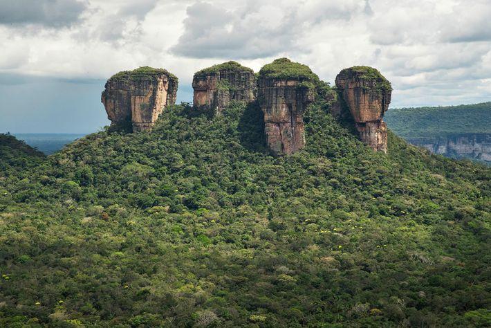 Parque Nacional Natural Chiribiquete
