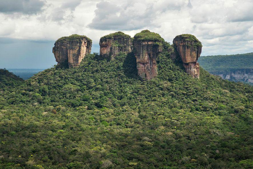 Der Parque Nacional Natural Chiribiquete – der größte geschützte Tropennationalpark der Welt – wurde 2018 um mehrere Millionen Hektar erweitert.
