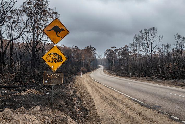 Straßenschild im Bundesstaat Victoria