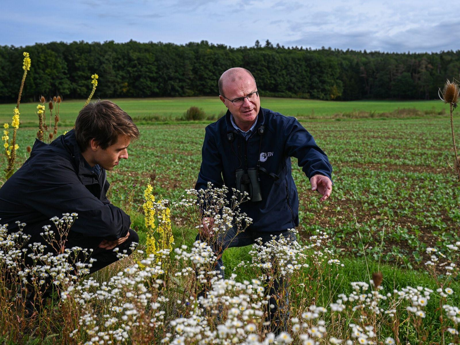 Norbert Schäffer, Vorsitzender des Landesbundes für Vogelschutz in Bayern, und sein Mitarbeiter Paul Kasko besuchen einen ...