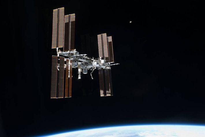Scott Kellys einjährige Mission auf der ISS wurde als ein Schritt auf dem Weg zum Mars ...