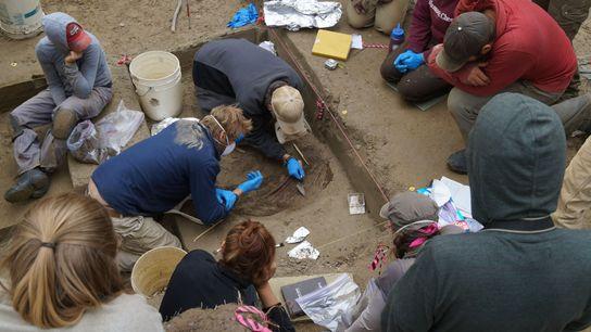 Die Überreste eines Kindes, die in einer 11.500 Jahre alten Stätte in Alaska ausgegraben wurden, deuten ...