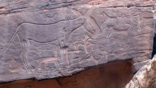 Sind dies die ältesten Darstellungen von Hunden?