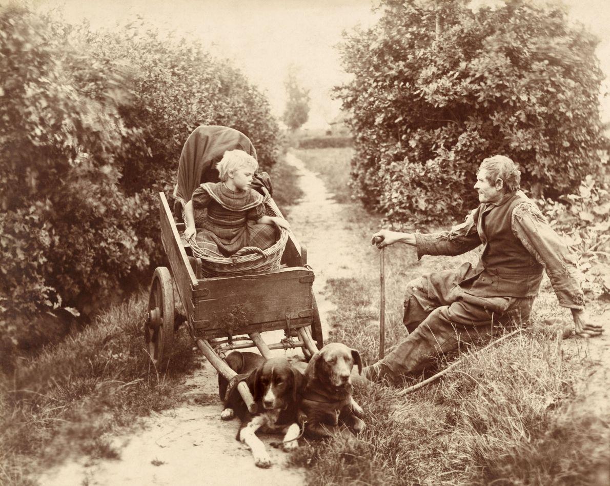 Ein junges Mädchen in Belgien sitzt in einem Wagen, der von zwei Hunden gezogen wird. Daneben ...