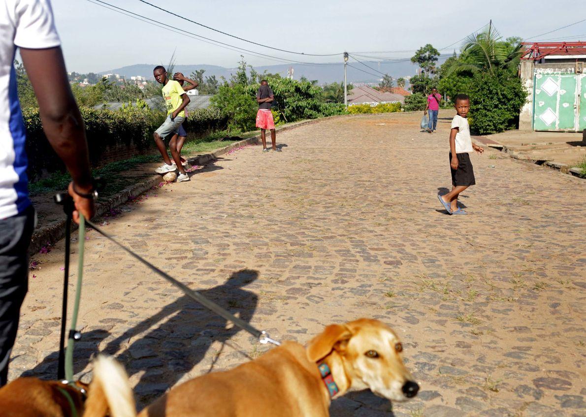 Kinder sehen zu, wie der Hundeausführer und Trainer Ngabo Faradji mit ein paar Hunden Gassi geht.