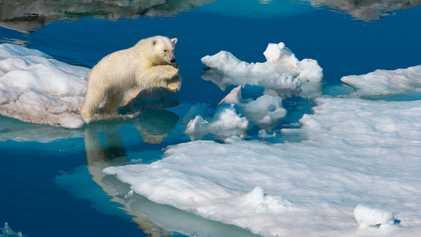 Galerie:  Überleben an den kältesten Orten der Erde