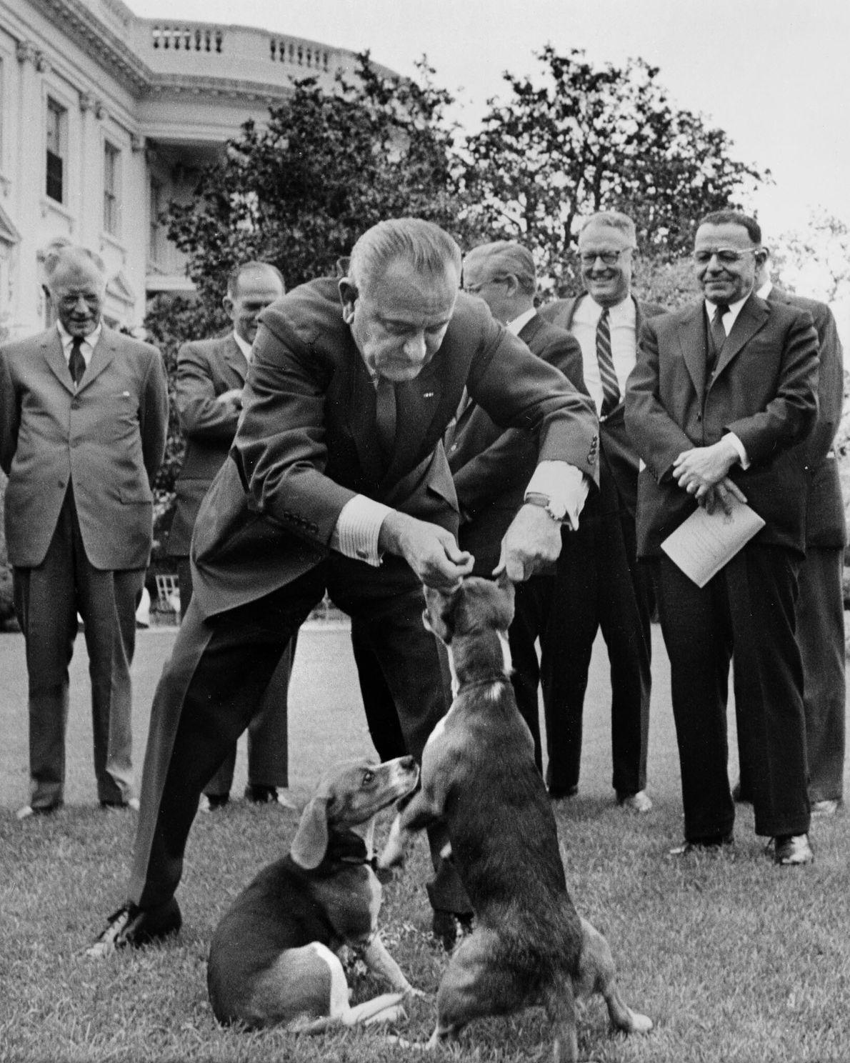 Präsident Lyndon Johnson & Beagle Him & Her