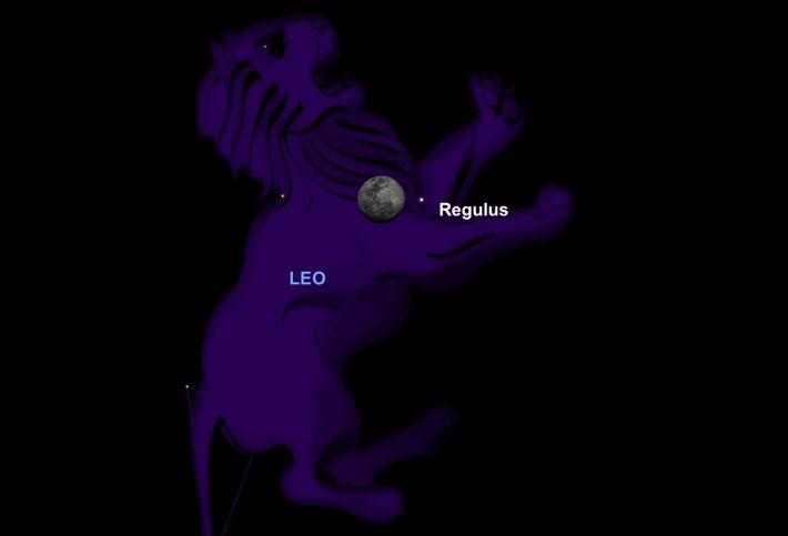 Am 18. März wird der Mond dicht am Herzen des Löwen – dem Stern Regulus – ...