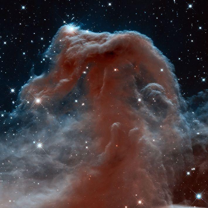 Dunkelwolke im Sternbild Orion