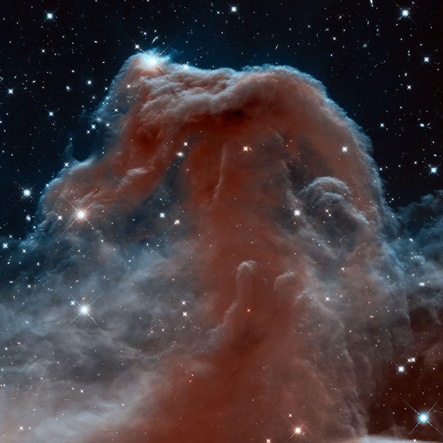 Der Pferdekopfnebel ist Teil einer riesigen Dunkelwolke im Sternbild Orion.