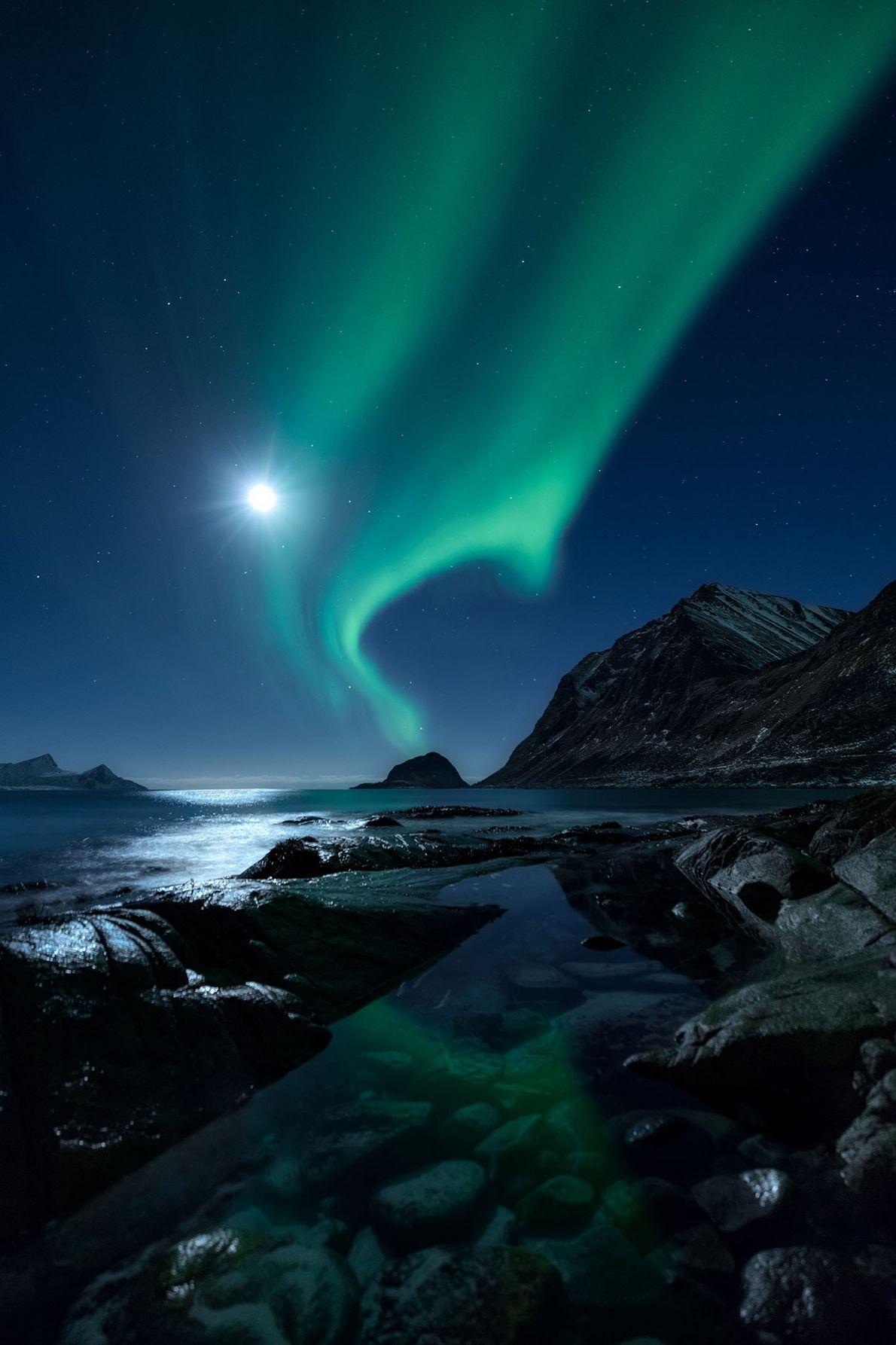 Über einem Fjord der norwegischen Lofoten leuchten der Mond und die Aurora borealis um die Wette.