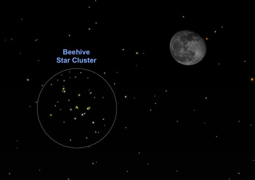 """An Heiligabend zieht der noch fast volle Mond an der """"Krippe"""" vorbei, dem offenen Sternhaufen Messier ..."""